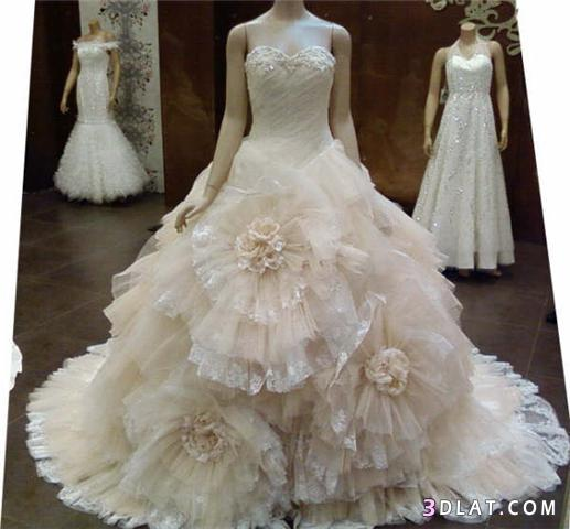 فساتين افراح للعرائس - فساتين زفاف جميلة - فساتين زواج