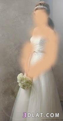 فساتين زفاف بسيطة ورائعة