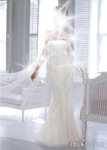 فساتين زفاف من الدانتيل والشيفون