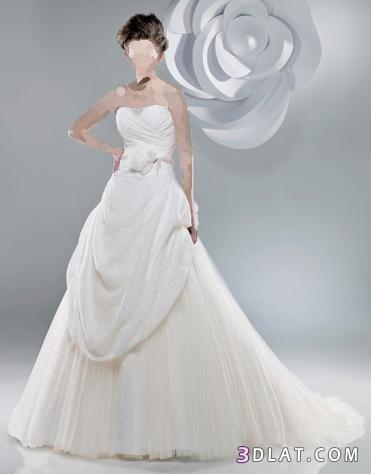 بفستانك انت اجمل وردة بين العرائس