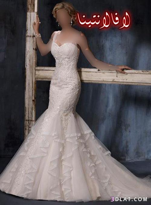 فساتين زفاف صور فساتين للزفاف