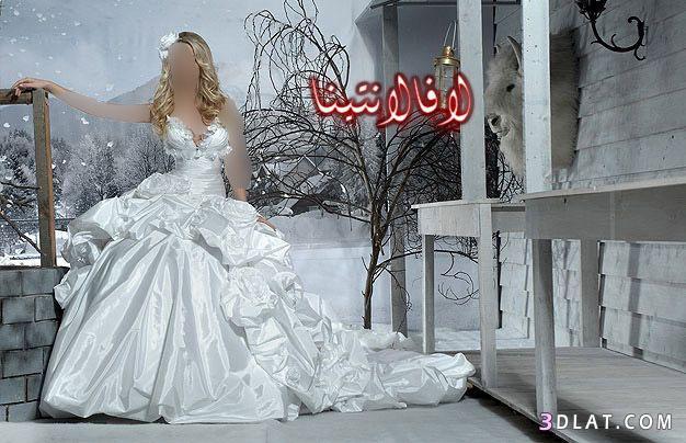 فساتين  زفاف جديده صور فساتين جديده للزفاف