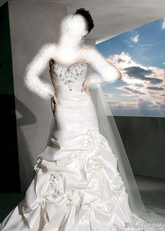 فساتين زفاف جديدة وحلوة
