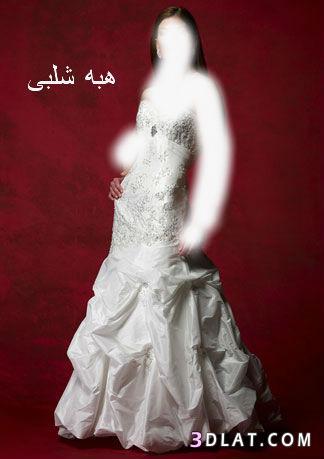 فساتين زفاف جميله فساتين زفاف أنيقة اجمل فساتين الزفاف