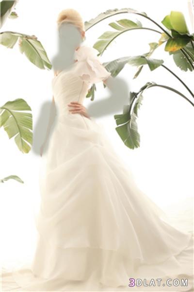 فساتين زفاف 2021،فساتين افراح،موديلات فساتين فرح 2021