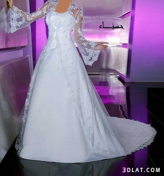 فساتين زفاف انيقة فساتين زفاف مع جاكيت جميلة وعصرية  فساتين حلوة للعروس