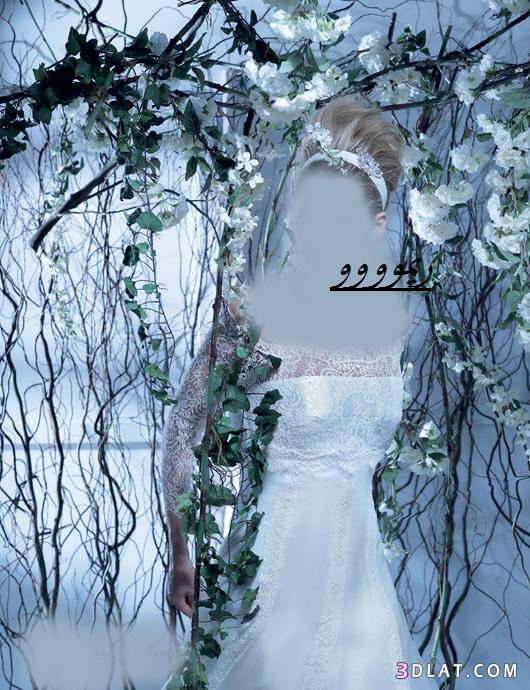 فساتين زفاف جديده2019،فساتين زفاف،فساتين اعراس،فساتين زواج،فساتين فرح،موديلات فس
