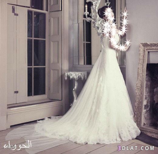 فساتين زفاف،فساتين للعروس،فساتين ناعمة