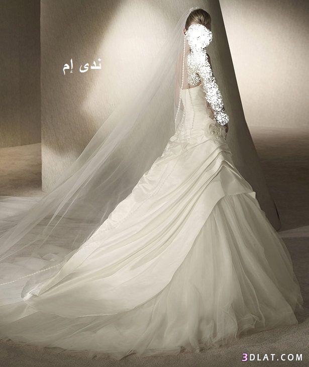 فساتين أفراح ، فساتين زفاف ، فساتين راقية