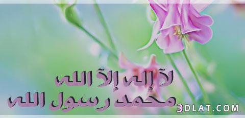 دينية 2019 جميلة،صور اسلامية للتواقيع،صور بلاك 13602479909.jpg