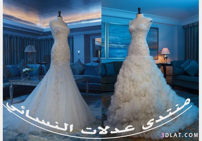 فساتين زفاف عبد محفوظ لربيع 2021-ارقى واحدث فساتين زواج 2021-فساتين افراح جديدة