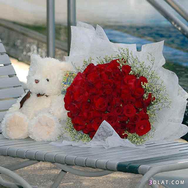رومانسية بوكيهات دباديب شموع 13606042217.jpg