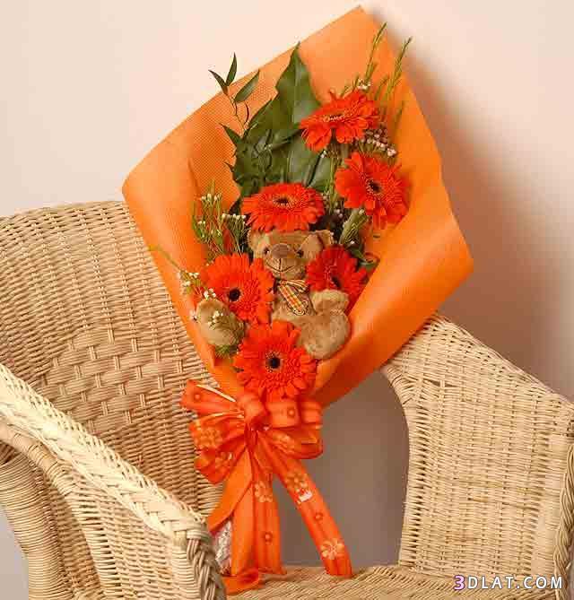 رومانسية بوكيهات دباديب شموع 13606042219.jpg