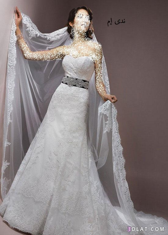 فساتين زفاف بالابيض و الاسود ، فساتين افراح اسود و ابيض ، فساتين زواج جديد