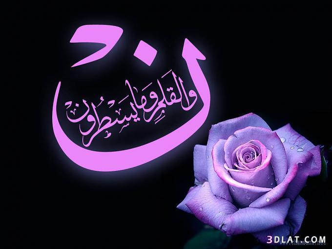 بسم الله 13606728433