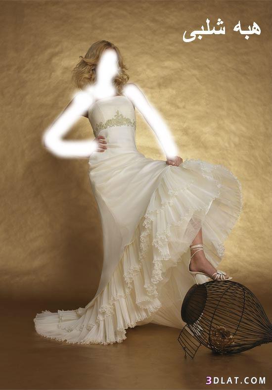 فساتين زفاف أنيقة فساتين افراح جميله صور فساتين عرائس جميله