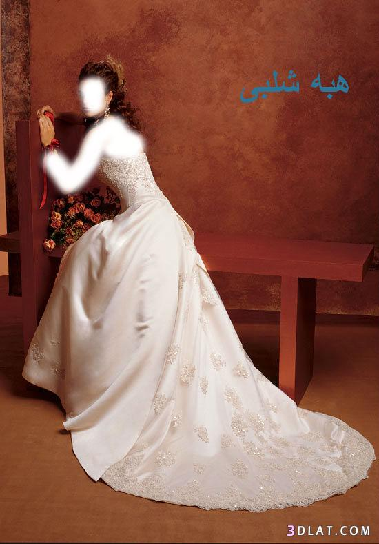 فساتين زفاف أنيقة اجمل فساتين افراح فساتين فرح مميزه