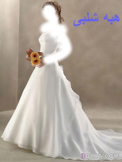 فساتين زفاف انيقه فساتين افراح جميله اروع فساتين للعروسه