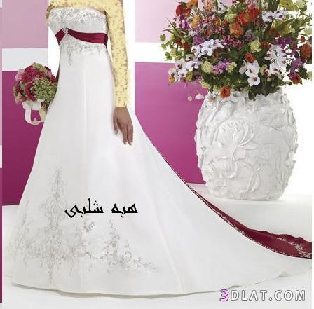 فساتين افراح فساتين زفاف مميزه فساتين زفاف جديده