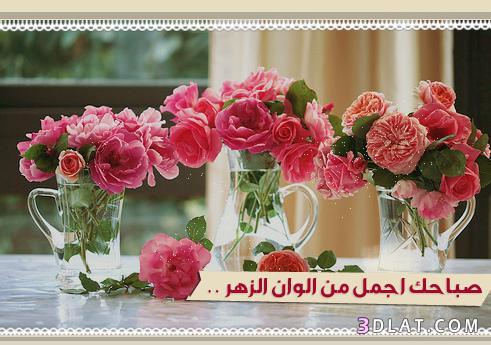 صباح الخير روعة 2019،بطاقات صباح الخير 13614191042.jpg