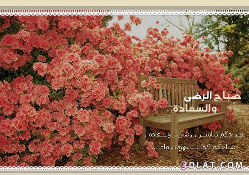 صباح الخير روعة 2019،بطاقات صباح الخير 13614191047.jpg