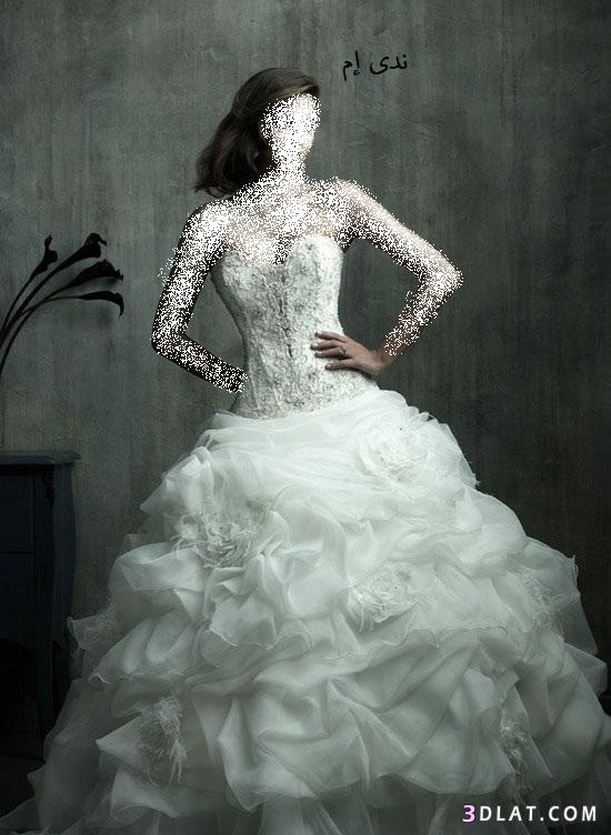 فساتين زفاف ناعمة ، فساتين افراح أنيقة ، فساتين زواج انيقة