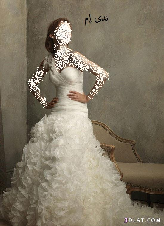 فساتين زفاف ناعمة فساتين افراح فساتين 13616356772.jpg