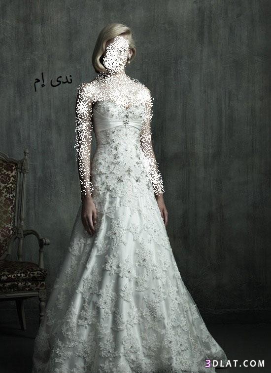 فساتين زفاف ناعمة فساتين افراح فساتين 13616356784.jpg