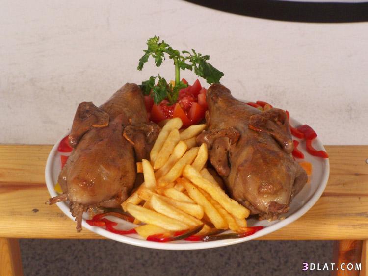 الاكلات المصريه الشهيره واللذيذه