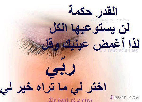 وعبر مصورة 13637413412.jpg