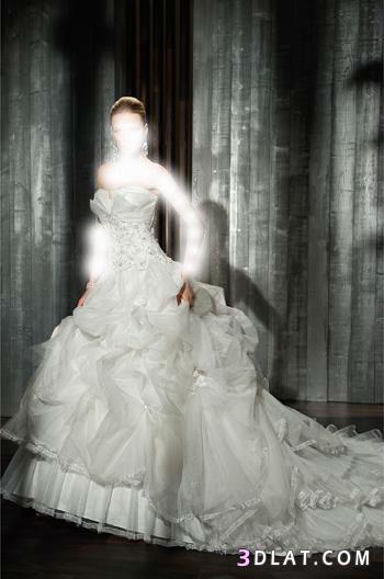 صور اجمل فساتين زفاف 2021 - فساتين زفاف لعروس 2021 - رووووووعة
