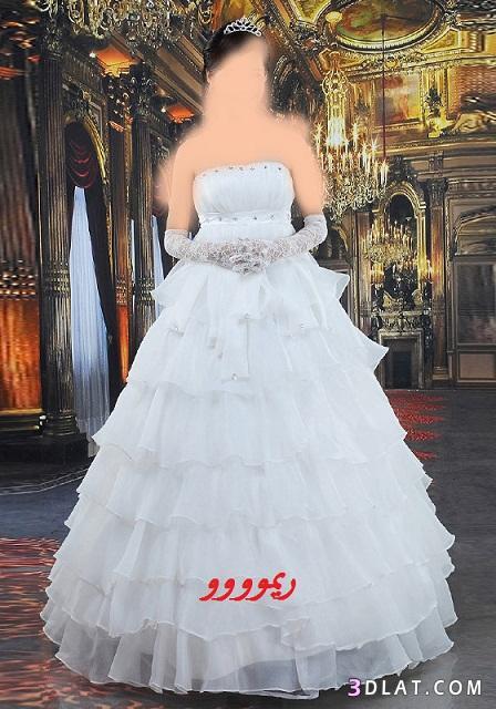فساتين زفاف 2021,اجمل فساتين الزفاف فى عرائس الجزائر وبس,فساتين زواج رائعه,اجدد فساتين ز