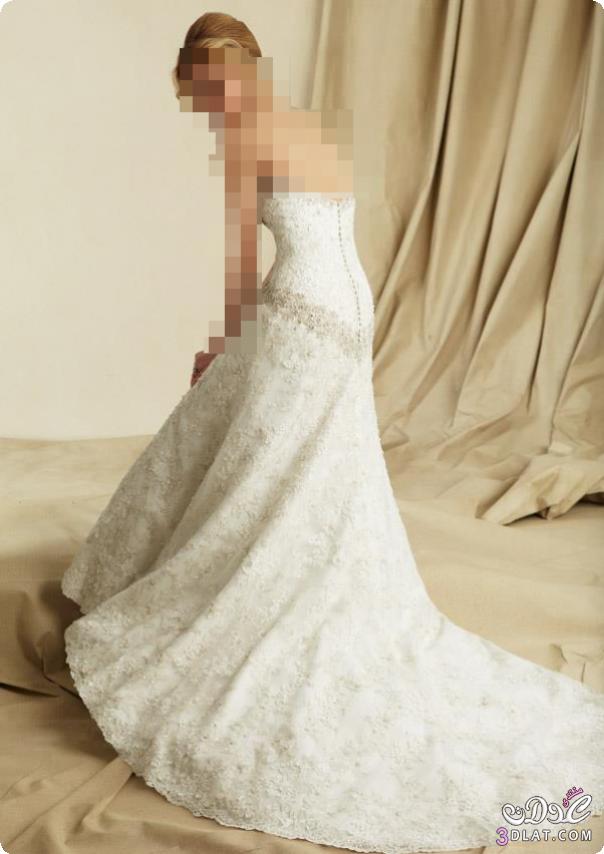 فساتين زفاف 2021, فساتين زواج جديدة