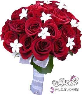ورود للعرايس مسكات يد لعروس 2013 ارق واجمل مسكات اليد لعروسة 2013 13682313351.jpg