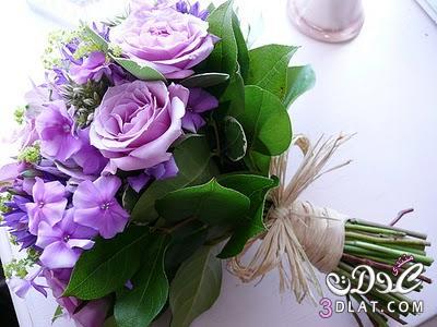ورود للعرايس مسكات يد لعروس 2013 ارق واجمل مسكات اليد لعروسة 2013 13682316711.jpg