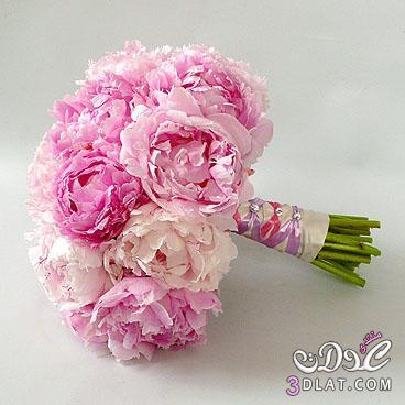 ورود للعرايس مسكات يد لعروس 2013 ارق واجمل مسكات اليد لعروسة 2013 13682316732.jpg