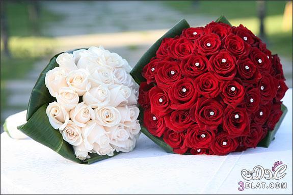 ورود للعرايس مسكات يد لعروس 2013 ارق واجمل مسكات اليد لعروسة 2013 13682316754.jpg