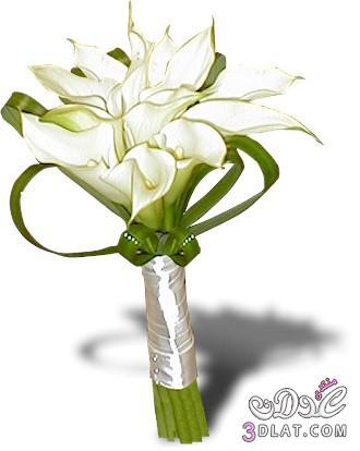 ورود للعرايس مسكات يد لعروس 2013 ارق واجمل مسكات اليد لعروسة 2013 13682319021.jpg