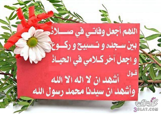 اجمل الادعية احلى الصور الاسلامية دينية 13685270254.jpg