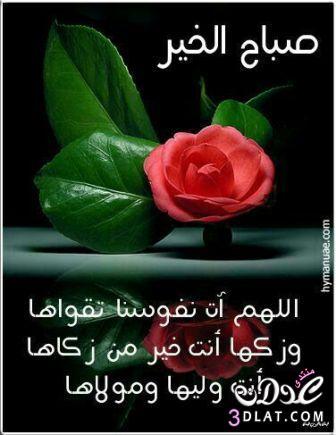 صباح الخير لصباح الخير 2017 صباح 13686929721.jpg