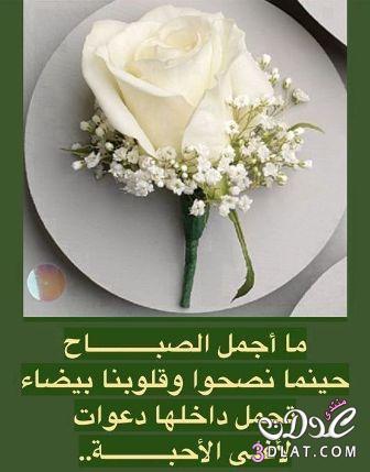 صباح الخير لصباح الخير 2018 صباح 13686929725.jpg