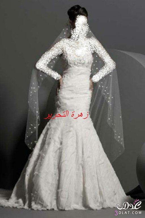 مجموعة فساتين رائعة للعروس2019