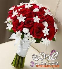 تالقى باجمل ماسكات الورود 13729549454.jpeg