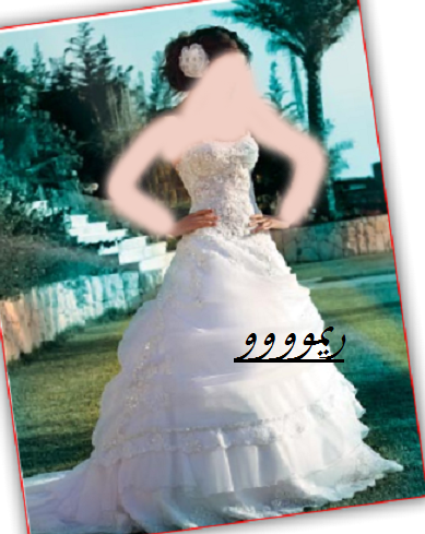 فساتين زفاف فساتين فرح فساتين زواج