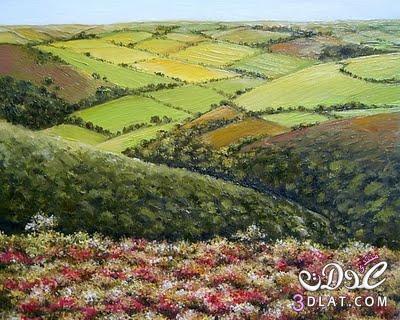 لوحات الورد لوحات عالميه للورد 13741789792.jpg