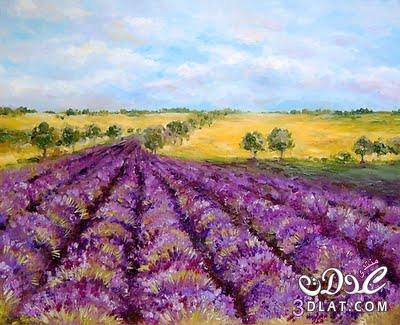 لوحات الورد لوحات عالميه للورد 13741789793.jpg