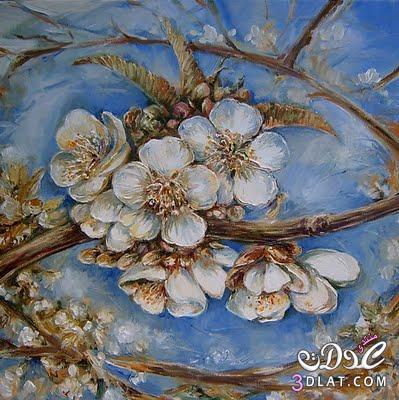 لوحات الورد لوحات عالميه للورد 13741789794.jpg