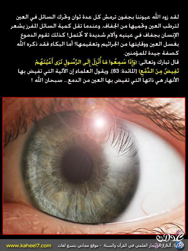 رائع بالصور: من أسرار الإعجاز العلمي في القرآن والسنة 13742925011