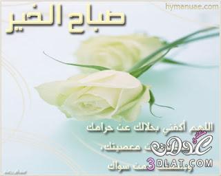 صور صباح الخير 13743308376