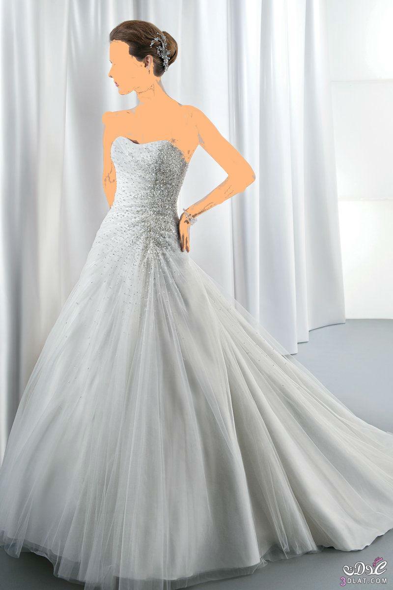 فستان زفاف أنيقة وأنيق